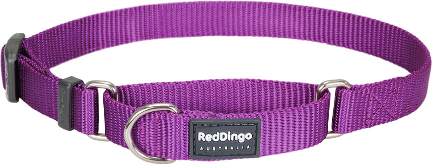 Correctie halsband paars Red dingo